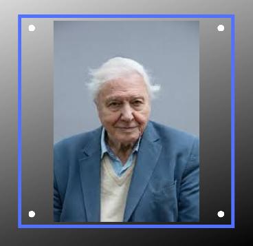 Happy Birthday Sir Attenborough