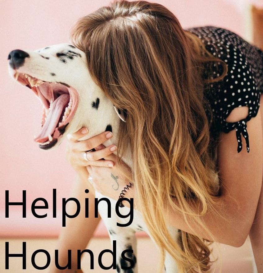 Pet's help to de-stress